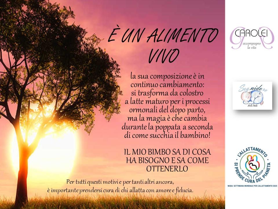 SAM 2020 a Bergamo con resoconto